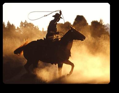 Vign_Vign_ws_Cowboy_with_lasso_1600x1200_1