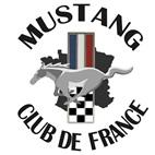 vign1_drapeau_MCFgros-Renew_copie